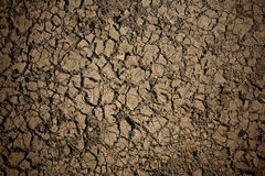Detailed texture: broke dry soil background Royalty Free Stock Photos