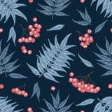 Engraving autumn rowanberry seamless pattern. Royalty Free Stock Photos