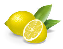 Lemon composition Royalty Free Stock Image