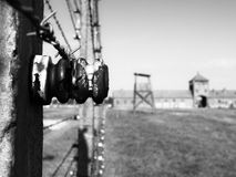 Detailed view of barb wire fence in concentration camp. Auschwitz Birkenau, aka Oswiecim Brzezinka, Poland, Europe Royalty Free Stock Photography