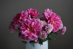 Pink dahlias with yellow centre and chrysanthemum flowers. Detailed view of a bunch of pink dahlias flowers with yellow centre and pink  chrysanthemums on a grey Royalty Free Stock Image