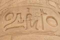 Detailed view of the cartouche (Karnak, Egypt) Royalty Free Stock Photos