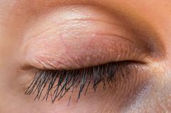 Detailed view of closed eye of woman. Macro photography of a beautiful female face Stock Photos