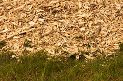 Detailed view at grass and a pile of dumped woodchips in the bac Royalty Free Stock Photography