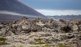 Detailed view of lava fields skyline in Iceland Stock Photography