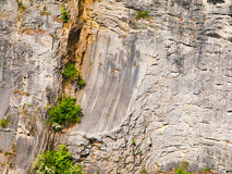 Detailed view of limestone texture, natural background Stock Photography