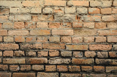 The detailed view of an old brick wall. Stock Photography