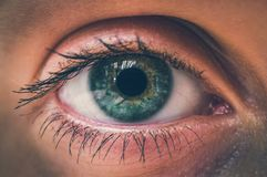 Detailed view of open eye of woman - retro style. Detailed view of open eye of woman - macro photography of a beautiful female face - retro style Royalty Free Stock Images