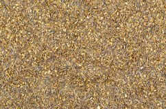Detailed view of Rooibos tea. Texture Royalty Free Stock Photography