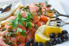 Detailed view of sliced salmon Trinley. Trinley sliced salmon on plate with garnish Royalty Free Stock Image