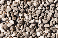 Detailed view of a stone garden. For background purposes Stock Photography