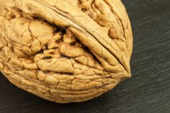 Detailed view of the structure of the shell of a walnut. Super foods for human brain. Healthy walnuts. Royalty Free Stock Image