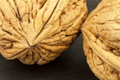 Detailed view of the structure of the shell of a walnut. Super foods for human brain. Healthy walnuts. Stock Images