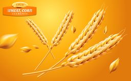 Free Detailed Wheat Ears, Oats Or Barley Isolated On A Yellow Background. Natural Ingredient Element. Healthy Food Or Royalty Free Stock Photo - 110216905