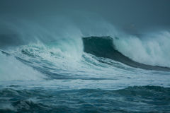 Detailed winter storm wave breaking and splashing on shore Stock Image