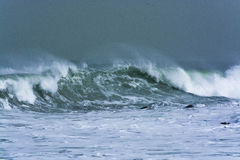 Detailed winter storm wave breaking and splashing on shore Royalty Free Stock Photo