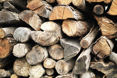 Detailed Wood Logs textures Stock Images