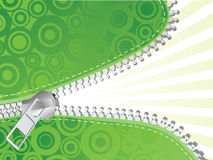 Detailed zipper. Green detailed zipper. Vector illustration Royalty Free Stock Photography
