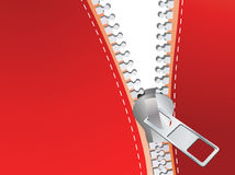 Detailed zipper Stock Image