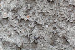 Detailfoto des grauen rauen Gipses Stockfoto