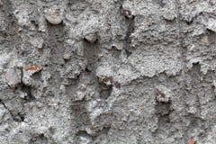 Detailfoto des grauen rauen Gipses Stockbilder