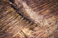 Detailleer de schoonheid van een houten raad Stock Foto's