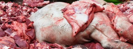 Pig leg on pile of fresh pork for cook in big party Royalty Free Stock Photo