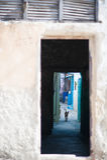 details Photographie stock libre de droits