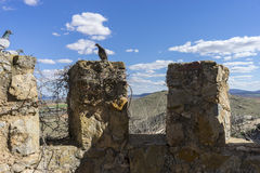 Details of battlements of a medieval castle. Town of Consuegra i Royalty Free Stock Photo