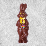 Details of a Big Chocolate Bunny Royalty Free Stock Photos
