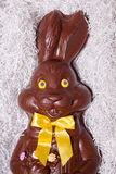 Details of a Big Chocolate Bunny Royalty Free Stock Image
