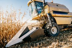 Details of Combine harvesting corn, working the fields during autumn harvest royalty free stock photos