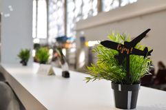 The details of the decoration of a cafe with a flower pot and a figurine of the aircraft. Horizontal. stock photos