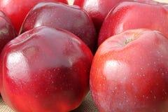 Details der roten Äpfel Stockbilder