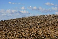 Details des Ackerlands in Toskana Lizenzfreie Stockfotos