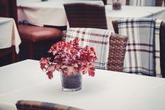 Details des Freiencafés in Tallinn, Estland Blumenstrauß von Blättern auf Tabelle Stockbilder