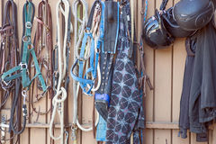 Details of diversity used horse reins Stock Photo