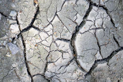 Details of a dried cracked desaturated soil Royalty Free Stock Photos