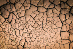 Details of a dried cracked earth Stock Image