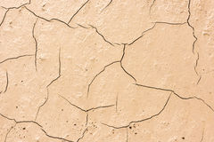 Details of a dried cracked seabed Stock Images
