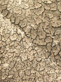 Details of Dry cracked soil Stock Image