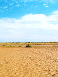 Details of dry river bed. Under blue sky Stock Photos