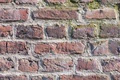 Details einer historischen Backsteinmauer mit Moos und limescales - vervollkommnen Sie für Schmutzhintergründe Stockbilder