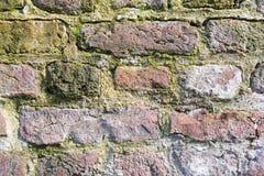 Details einer historischen Backsteinmauer mit Moos und limescales - vervollkommnen Sie für Schmutzhintergründe Stockfotografie