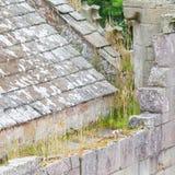 Details einer vergessenen alten schottischen Abtei Lizenzfreies Stockbild