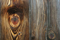 Details on fir plank with knots Stock Photography