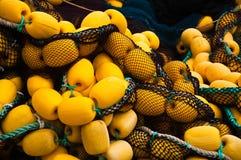 details fisknät Royaltyfri Foto