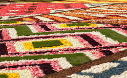 Details of Flower Carpet on Grand Place Royalty Free Stock Photos