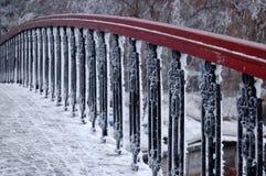 details frozen Στοκ φωτογραφίες με δικαίωμα ελεύθερης χρήσης