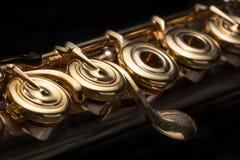Details of a golden flute black background stock photography